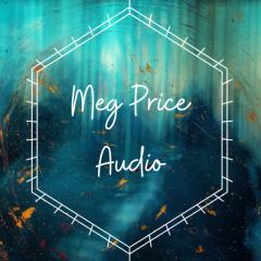 Audio price New &